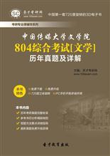 中国传媒大学文学院804综合考试[文学]历年真题及详解